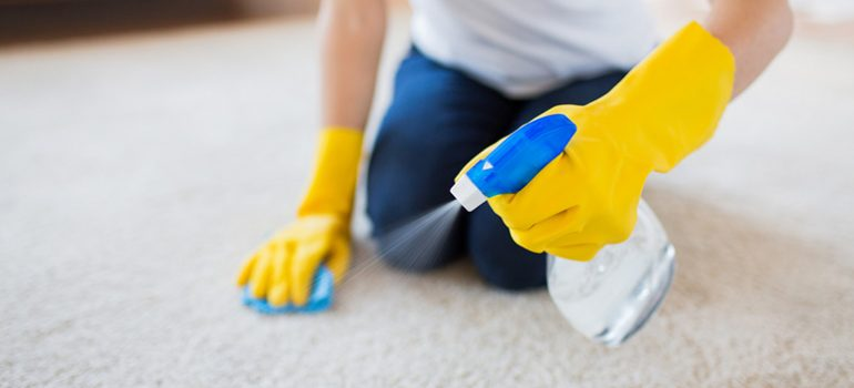 How to clean common carpet stains by yourself.