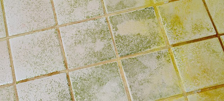 Removing Paint from Tiles and Grout